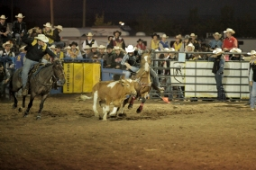 CWC_Rodeo_14-167