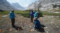 Archaeology at 11,000 feet – breaking new ground in high elevation archaeology (Todd Guenther and his Archaeology team)