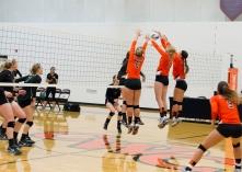 volleyball_0533
