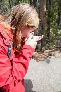 Yellowstone0548