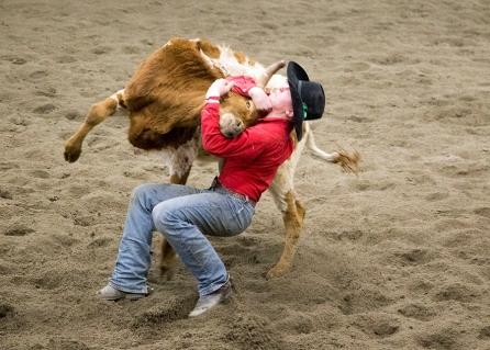 rodeoVideo_3961blog