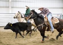 rodeoVideo_3984blog